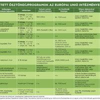 Egyetemista vagy? Itt az idő, hogy válassz magadnak egy uniós gyakornoki programot!
