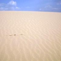 Extrém Európa: sivatagok