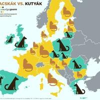Macskák vs. kutyák Európában – te melyik csoporthoz tartozol?