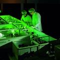 Röptében fotózott elektronok – lézerkutatás Szegeden