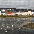 A novemberi menü: Írország, digitalizálódás, Kutatók Éjszakája