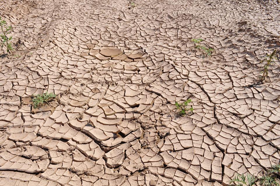 drought-19478_960_720.jpg