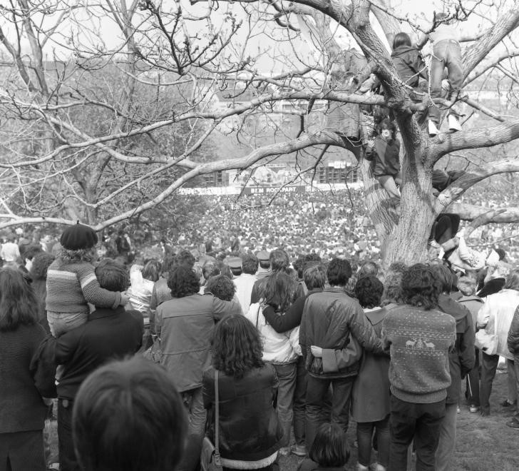 Egy tabáni koncert, 1985