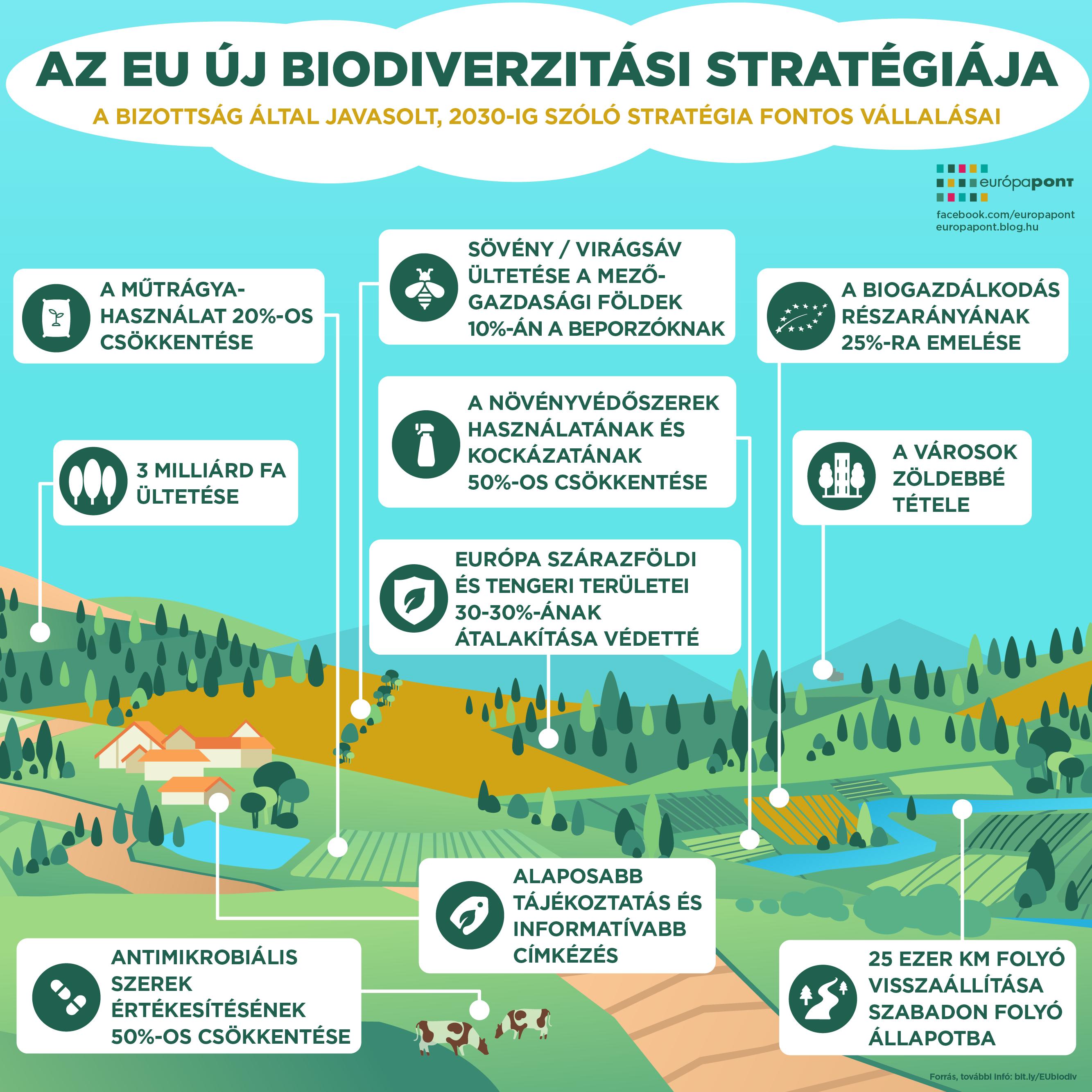 biodiverzitas4-01.png