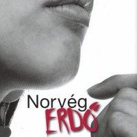 Murakami, Haruki: Norvég erdő