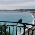 Côte d'Azur novemberben – 1. rész