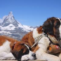 Matterhorn – a világ legveszélyesebb csúcsa