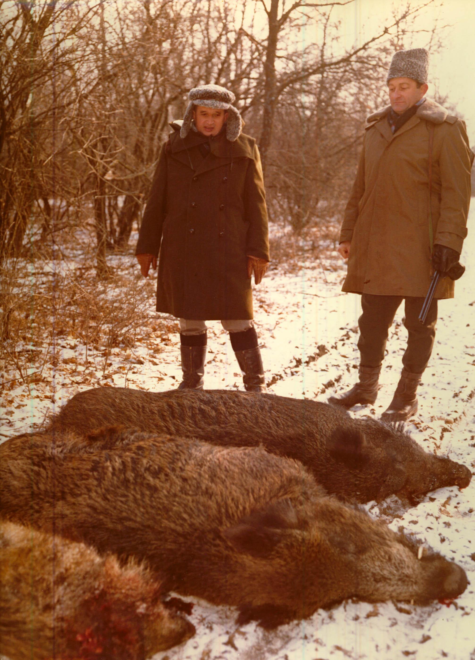 iiccr_n155_ceausescu_hunting_boars.jpg