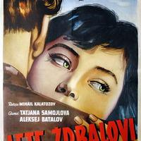 326. Szállnak a Darvak (Летят журавли) - 1957