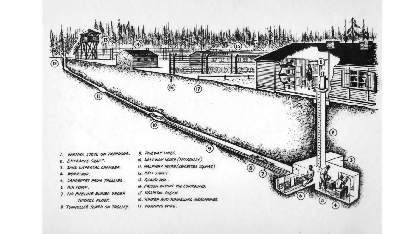 alagutw_tunnel_harry_cutaway_w-mr.jpg