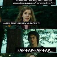 Hermione, tudod hogyan kell megidézni egymillió pici varázslót?