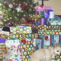 Karácsonyi bosszú