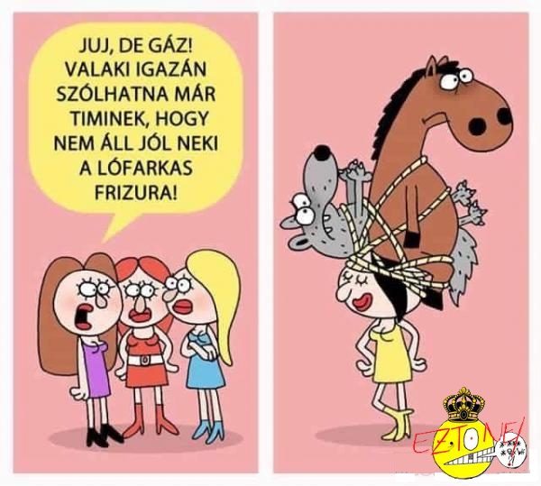 lofarkas_frizura.jpg