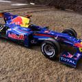 Vettel World Champion 2010 Red Bull