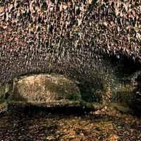 A sárkány barlangjai: a szentpétervári mesterséges erődszigetek titkai