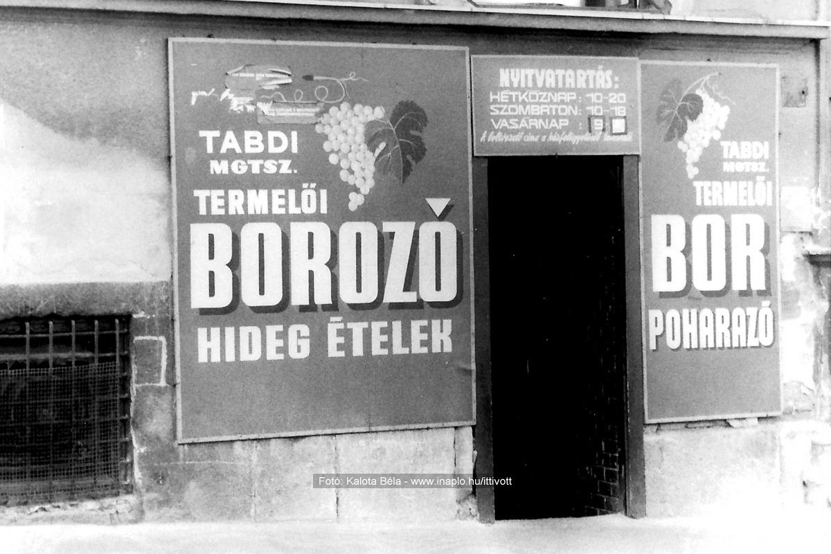 A borozó egykori bejárata. (Fotó: Kalota Béla/inaplo.hu/Iittivott)