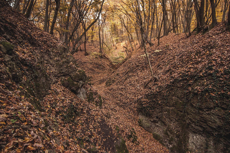 A Kovács-patak (Forrás: Ciernediery.sk)