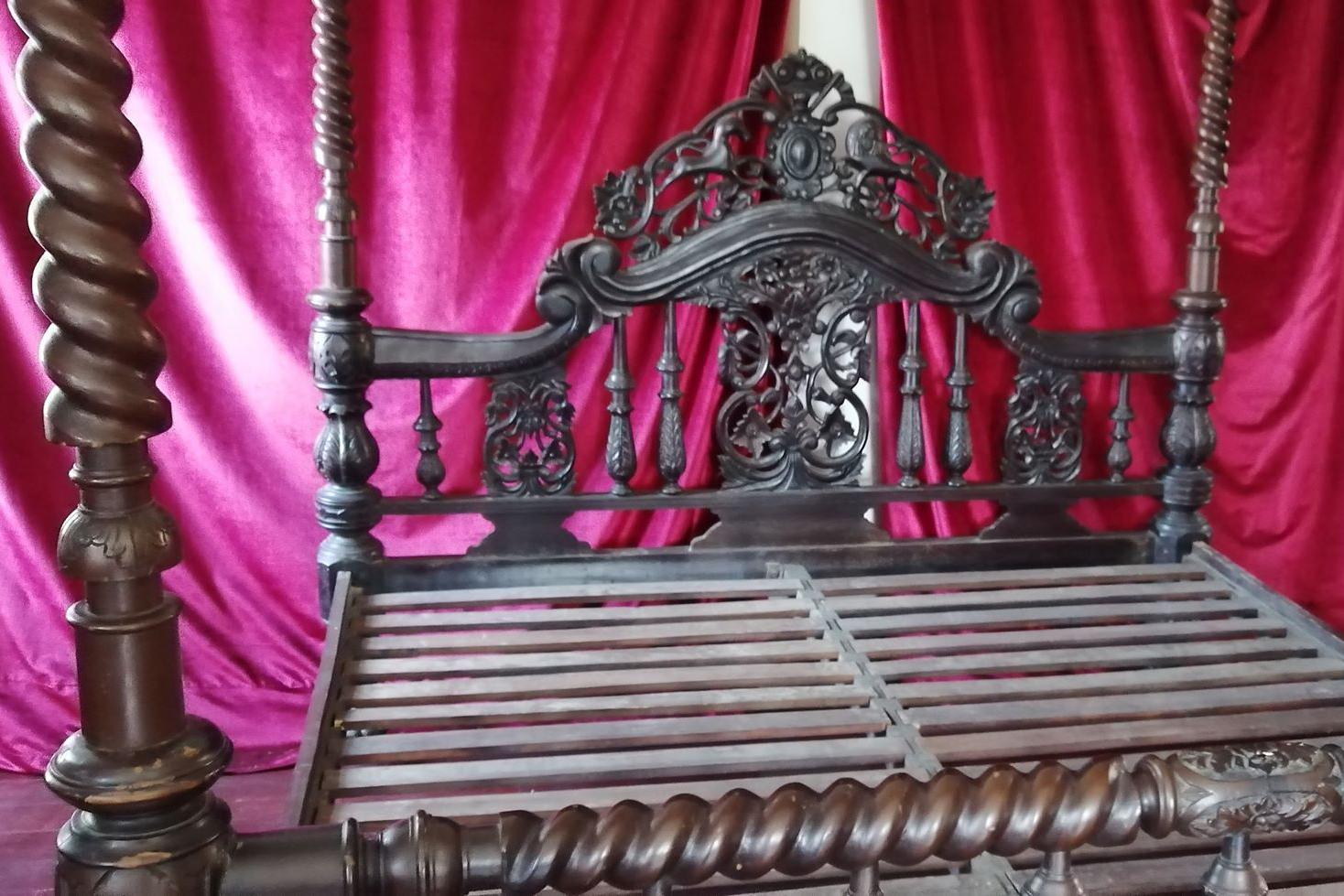 A hadúr vetetlen ágya (Fotó: Rimányi Áron - Falanszter.blog)