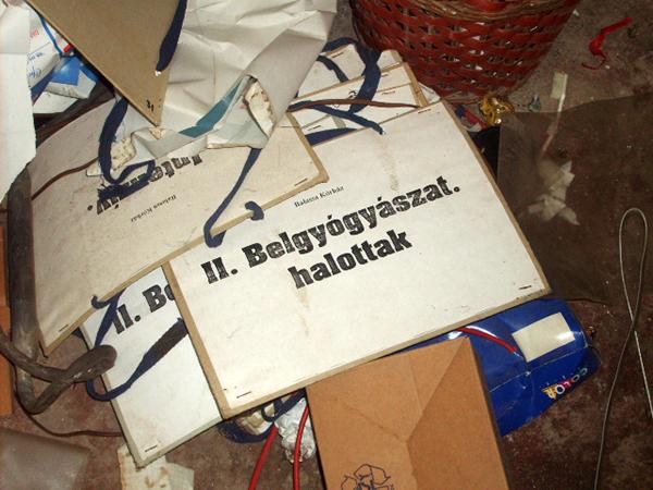 Lomok (Fotó: Falanszter.blog.hu)