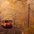 Őszi vonatozások