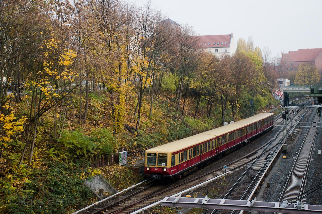 berlin-002r.jpg