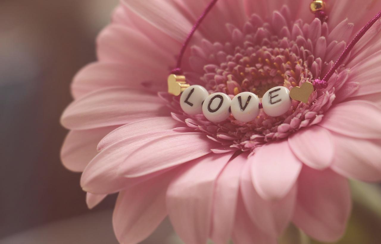 love-3388622_1280.jpg
