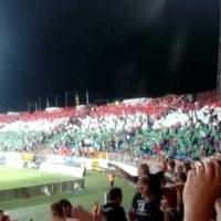 Videoton-Slovan szurkolás