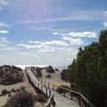 Hét plusz egy varázslatos strand Európában