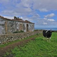 Fapados szigetkör az Atlanti-óceán közepén