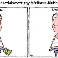 Wellness ...