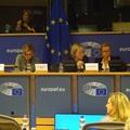 Az Európai Parlament Petíciós Bizottságában vitattuk meg a párkányi hulladékégető ügyét