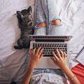 Blogközösség