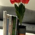 A legjobb motiváló könyveim - Márciusi könyvkihívás