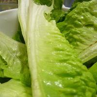 Caesar Cardini salátája