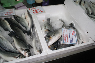 Haltál helyett – tengeri durbincs zöldfűszeresen