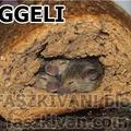 Finom friss ropogós kenyér reggelire?