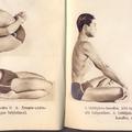 Honi jógi
