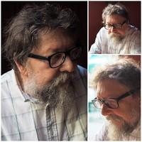 A magyar Platonov