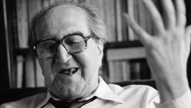 Ki a legszebb magyar író?