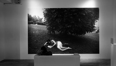 Nő a fa alatt