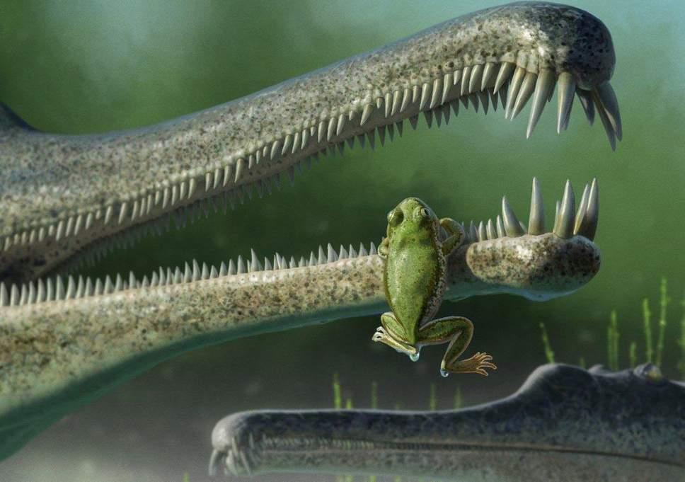 prehistoric-frog.jpg