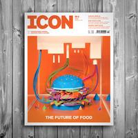 Icon magazin február