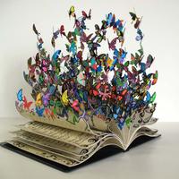 Pillangóhatározó zsebkönyv