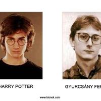Harry Potter és a magyar politika