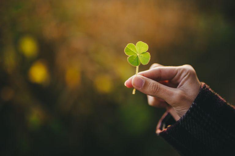 holding-a-four-leaf-clover-553315453-5769550a3df78ca6e403f2df.jpg