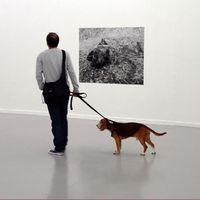 Kutyával múzeumozni? Most már ez is lehetséges!