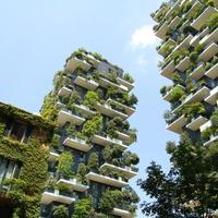 Vertikális erdőt húznak fel Újpest központjában - új, zöld lakópark épül