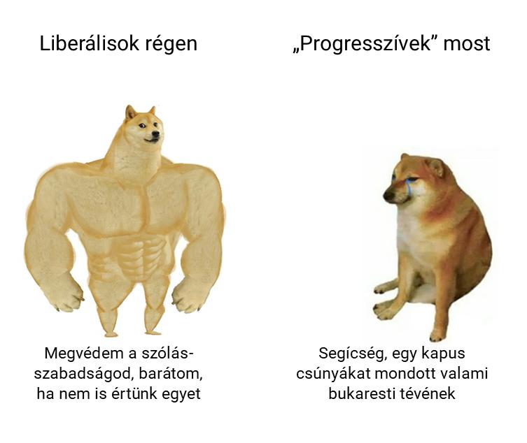 liberalisok.png