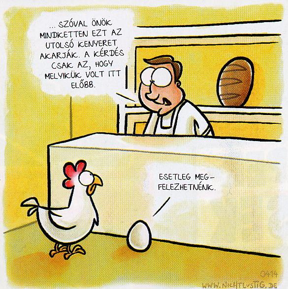 Tyúk vagy tojás? - HumorSziget