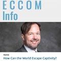 A koronavírus hatása a világpolitikára - elemzésem a Global Security Review és az eCCO Magazin hasábjain